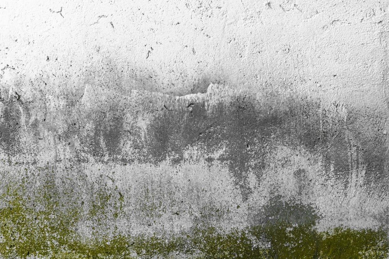 Enlever la mousse des murs et murets extérieurs
