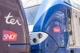 Grève SNCF et RATP: deux dates de grève contre la réforme des retraites