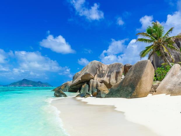 Hiver au soleil: 50idées de destinations