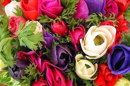 Les bouquets de fleurs de la Galerie-photo