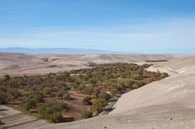 Quillaga au Chili : la ville qui ne connaît pas l'eau