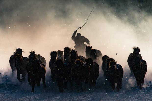 """""""Cavalier de l'hiver"""", lauréat du Grand Prix"""