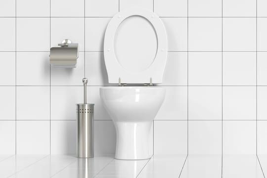 Changer une lunette de WC