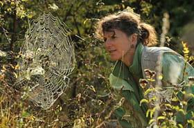 """Christine Rollard (Aranéologue):""""Les gens n'imaginent pas la diversité du monde des araignées"""""""