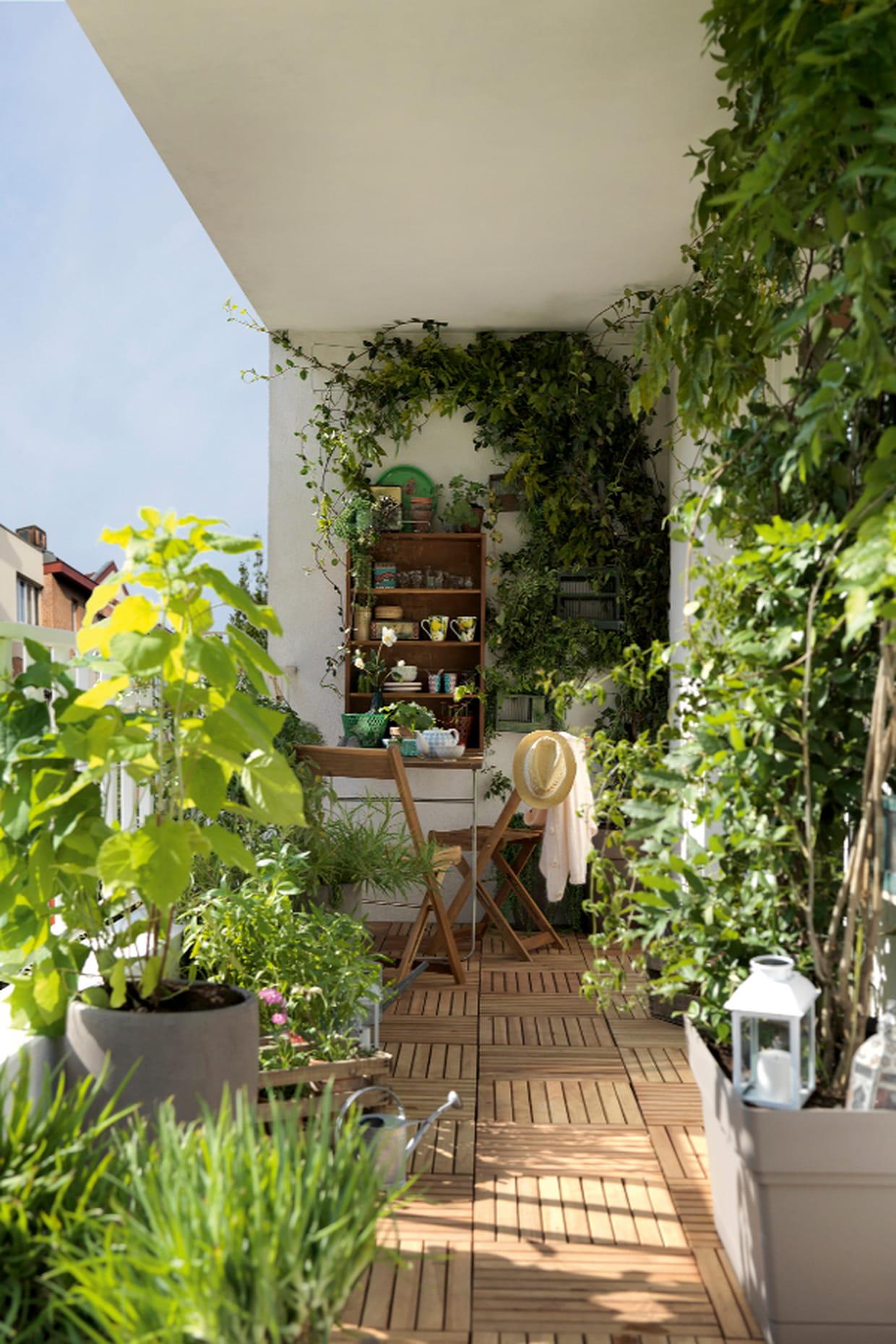 Un Mini Terrasse Verdoyante