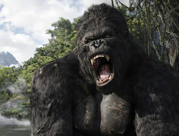 King Kong - Photo 2