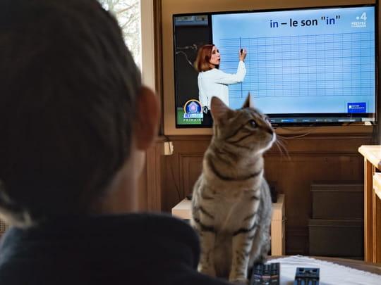 France 4: nouvel emploi du temps de cours, quels sont les horaires?