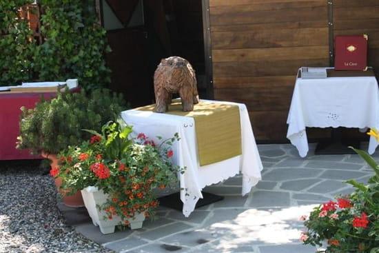 L'Ours des Roches