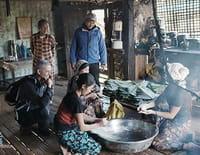 Sur la piste des senteurs : Le parfum de la dame de Rangoun