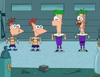 Phineas et Ferb : Faisons un quiz. - La taupe au nez étoilé