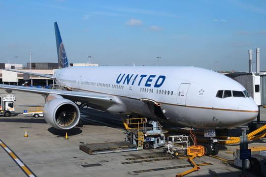 United Airlinesa échangé deux chiens par erreur à l'aéroport