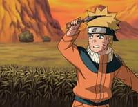 Naruto : Le cri des mille oiseaux