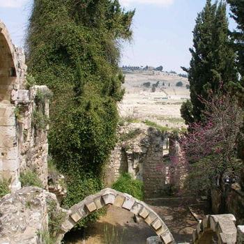 le mont des oliviers (au dernier plan) à jerusalem