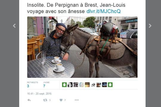 Jean-Louis voyage avec une ânesse depuis deux ans