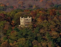 Vues d'en haut : Dans les forêts du Connecticut