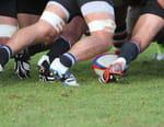 Rugby : Premiership - Newcastle / Bristol Rugby