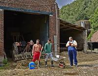La bouse : A la Saint-Jérôme, lâche ton coq dans le gallodrome