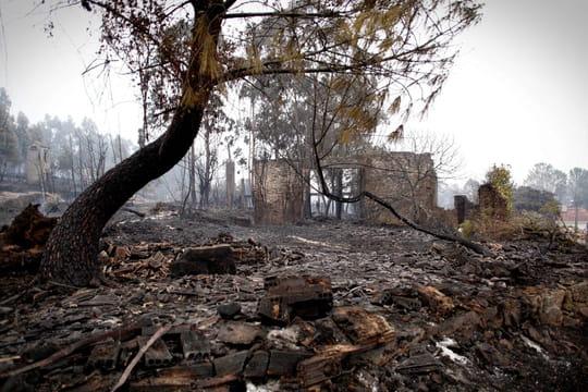 """Incendie au Portugal [photo et vidéos]: 145feux, dont 32""""graves"""""""