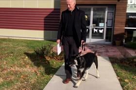 Vidéo. Major : le chien de Biden adopté dans un refuge