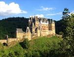 Les châteaux du Moyen Age