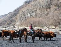 Alaska, la dernière frontière : En partance