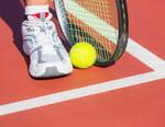 Tennis : Tournoi WTA de Dubaï - Finale