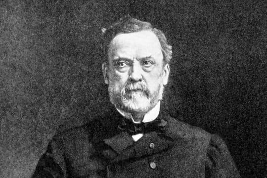 Louis Pasteur: sa biographie courte, ses découvertes, la vaccination