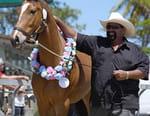 Nouvelle Calédonie : au rythme des chevaux