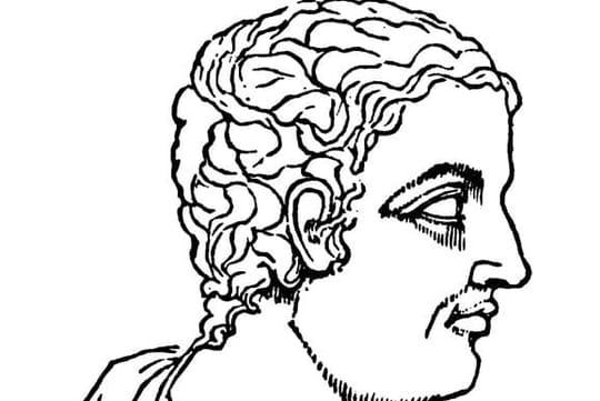Pline le Jeune: biographie courte de l'auteur des Lettres