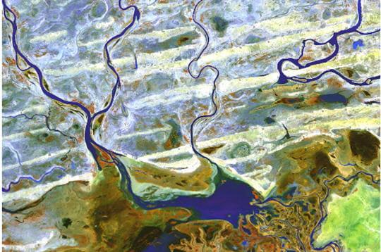 Delta du Niger