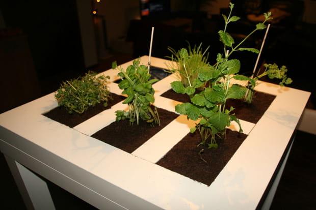 Une table basse qui fait office de potager for Table qui s agrandit ikea