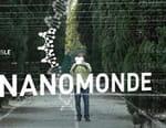 Bienvenue dans le nanomonde
