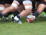 Rugby : Championnat national des provinces néo-zélandaises - Auckland / Tasman