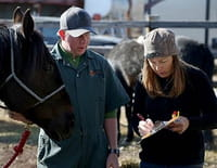 Michelle ou la vie sauvage : Quand les chevaux volent