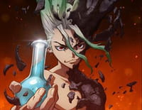 Dr. Stone : Master of Flame