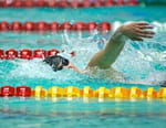 Natation - Meeting de Nice