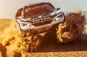 Le Dakar 2017en 15questions et images