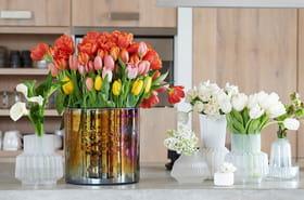 Quelles plantes et fleurs adopter pour patienter avant le printemps?