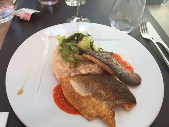 Plat : L'Escale du Bassin  - Filets de bar, coulis de poivrons, risotto au chorizo.  -
