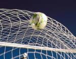 Football : Premier League - Newcastle / Tottenham