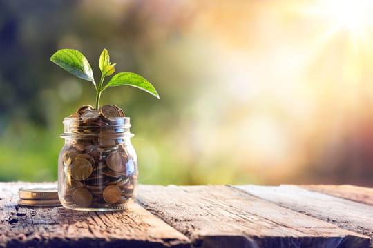 LDD: plafond, taux et intérêts du Livret de développement durable et solidaire