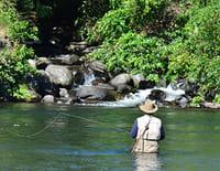Roi des rivières : Début de saison sur la belle rivière Petit Pabos