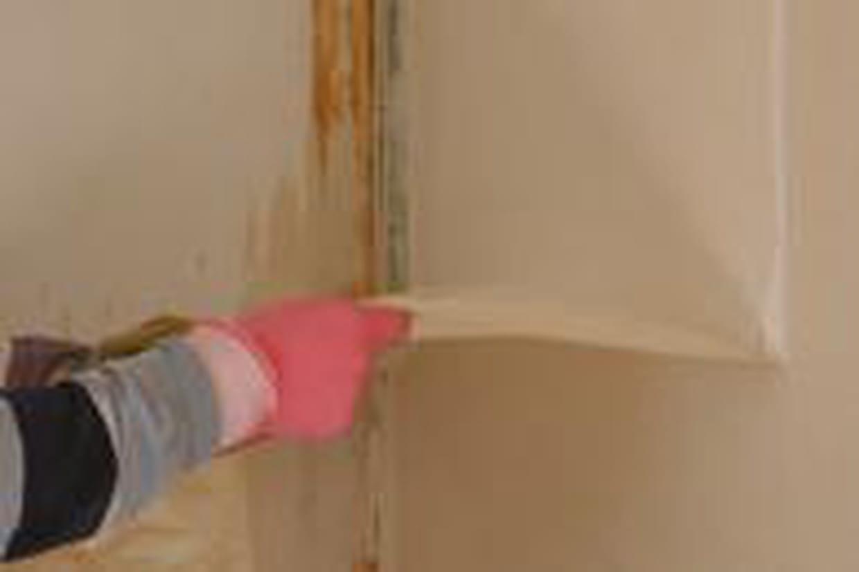 Spatule Décoller Papier Peint comment décoller du papier peint