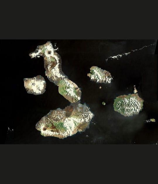 Les Galapagos, en forme d'hippocampe