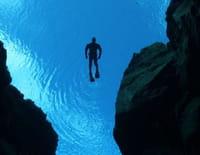 Au coeur des abysses : Créatures des profondeurs