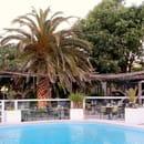 Le Marin' Palm