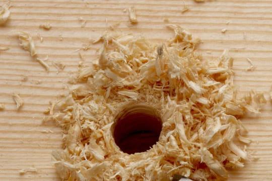 Reboucher les trous du bois