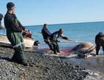 Les derniers chasseurs de Sibérie