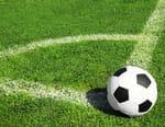 Football : Championnat du Portugal - FC Porto / CD Tondela