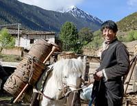 Les plus beaux  parcs nationaux d'Asie : Le trésor de l'Himalaya